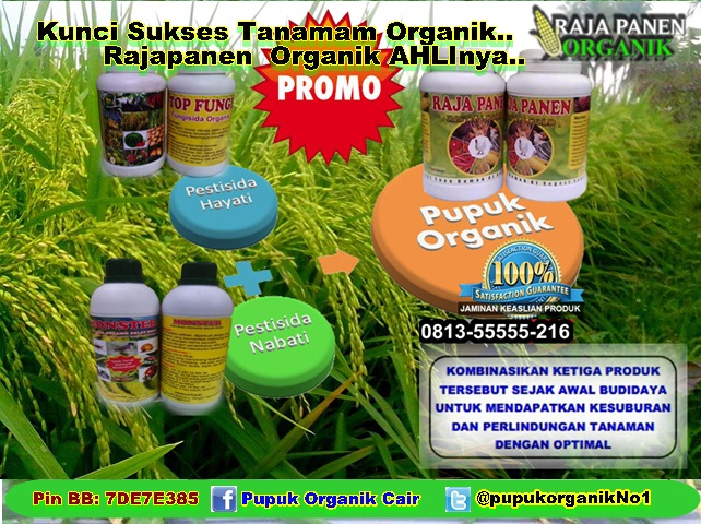 Distributor pupuk organik, agen pupuk organik, jual pupuk organik, pupuk organik cair jakarta, pupuk npk organik