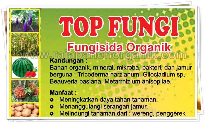 distributor fungisida organik, agen fungisida organik di jakarta, jual fungisida organik, Trichoderma organik, Npk organik, jual trichoderma di jakarta